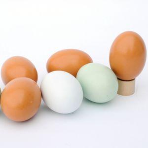 Easter Egg Kid Pretend bois Jouer Jouet Cuisine nourriture Enfants Noël Apprentissage Pâques Jeux Education cadeau