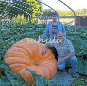 30 unids / bolsa semillas de calabaza gigantes, calabaza de halloween deliciosas semillas de hortalizas orgánicas para el hogar jardín decoración de calabaza plantas al aire libre
