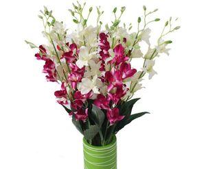 Yüksek simülasyon Avrupa tarzı küçük yang lan öykünme ipek çiçekler tek çiçekler Rong yüksek taklit etkisi