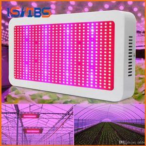 Grow Light Kits 600W Led Grow Lights Système de plantes de floraison et de culture hydroponique Led Lampes Plantes AC 85-265V
