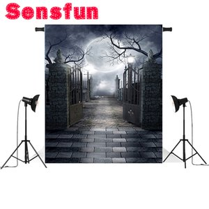 Pano de vinil fino Pano de fundo fotografia Backdrop Halloween fotográfico para Studio Photo Prop 5x7FT