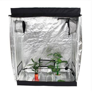 Wholesales 120 x 60 x 150cm Home Use Dismountable Hydroponic Plant Growing Tent With Window greenhouse plants in an eco-friendly way