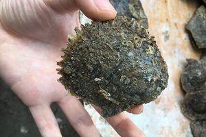 Sea Akoya perla marina 6-7mm naturale di acqua salata rotonda perla ostrica partito del regalo di compleanno di fantasia