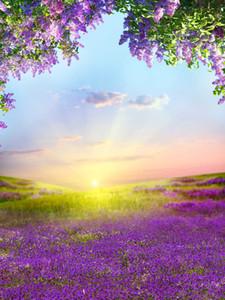 5x7ft Vinyl Spring Sunshine Lavenders Gramado Fotografia Estúdio Backdrop Fundo