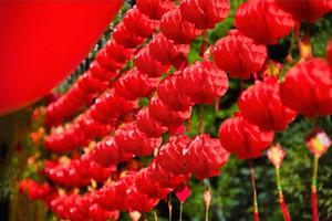 Nuevamente 16 pulgadas papel chino linterna impermeable a prueba de polvo papel rojo panales decoración del banquete de boda del año nuevo