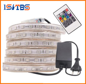 LIBERO Cut 10M-50M 110V / 220V alta tensione SMD 5050 RGB Led strisce illumina impermeabile + IR Remote Control + Power Supply
