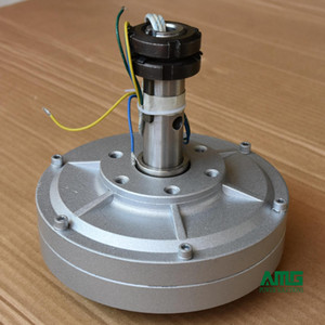 30W 200 giri / min 12 / 24Vcc a bassa velocità Avviamento basso per alternatore generatore senza nucleo a magnete permanente fai-da-te
