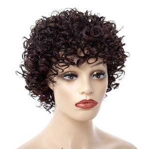Sara Lady Frauen Kinky Tiefes Lockiges HaarWig Glueless Full LaceWigs Lace FrontWigs Haarteil Curly Haarteile; 8 Styles