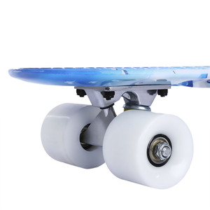 22 inch Dolphin Pattern Four-wheel Long Skateboard PP Plastic Board Deck customizable pp deck skate board plastic skateboard