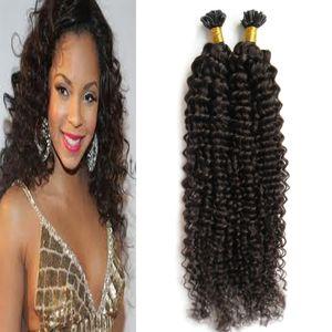 Marrom Escuro Brasileiro Cabelo Encaracolado Cor Natural U Dica Extensão Do Cabelo Humano 100g kinky curly pré ligado fusão extensões de cabelo humano