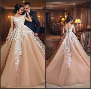 Lace Appliqued Organza Champagne Ball Gown Wedding Dress In Colors beautiful Bride Gown vestido de novia desmontable