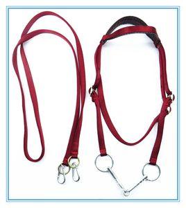 Fullset cheval licou poney bride fixe ceinture durable équitation accessoires harnais