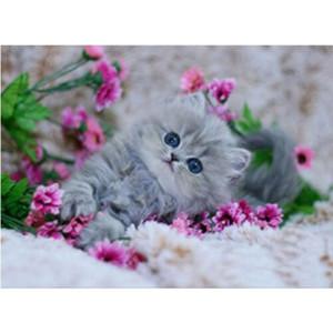 5D Yuvarlak Elmas Nakış Elmas Mozaik İğne Hayvan Diy Elmas Boyama Çapraz Dikiş Setleri Mozaik Kedi Yaratıcı Ev Dekorasyonu Hediyeler