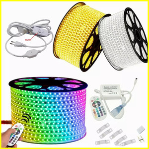 110V 220V Dimmable Led Strips 10M 50M 100M High Voltage SMD 5050 RGB Led Strips Water Against+IR Remote Control + Power Supply Christmas Lights