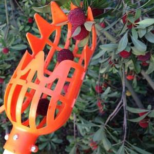 Ferramentas de Jardim de plástico Fruit Picker Sem Pólo Apanhador para a Colheita de Colheita Maçã Mango Pear Kiwi Tree