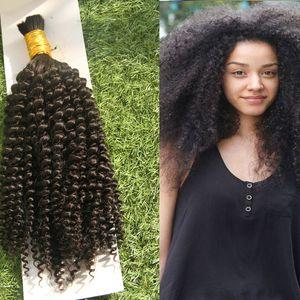 곱슬 곱슬 곱슬 곱슬 곱슬 한 머리카락 Braiding 1 번들에 대 한 인간의 머리카락 10-26 인치 자연 색상 머리 확장