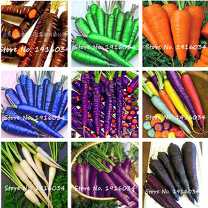 50 Seeds pack Carrot Seed Blue Yellow Radish Seeds Vegetables Plants Garden Men Loseweight Health Fruit And Vegetable Food Seed