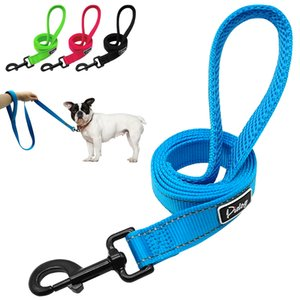 Wholesale-Didog Reflective Dog Leash Night Safety Dogs Walking Outdoor Training Walking Leads With Soft Handle for Small Medium Breeds