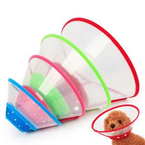 Pet Grooming Accessories Nuovi colori Bordo Cane elisabettiano Collare per gatti Chihuahua Cani Collari per cucciolo Previene la leccatura del morso