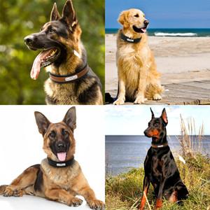 Eco-Friendly персонализированного Ошейник Customized Собака Id Ошейники Внутреннего проложенный Кожа Pet Воротник для среднего Большого Pets Free гравирования