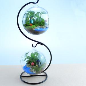Creativo Comicalness Vaso per piante in vetro Micro Paesaggio ecologico Bottiglia Acqua Tear Drop Glass Hanging Vaso Fioriera Terrario Decorazione