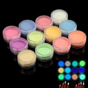 12 Farben Nail Art Fluoreszierende Pulver Acryl UV Gel Nail Luminescent Pigment
