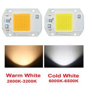 10PCS / LOT LED COB رقاقة 20W 30W 50W AC220V / 110V ضوء سائق الخرز الذكية IC لDIY الكاشف في الهواء الطلق