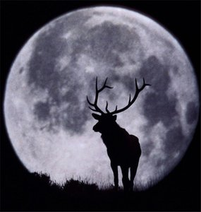 Diy diamond painting cross stitch kit rhinestone mosaic home decoration animal deer under moon night full round diamond embroidery yx1643