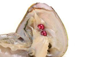 Круглый Oyster Pearl 6-8 мм 20 Mix цвет пресной воды устрицы с двойной жемчуг подарок DIY природный жемчуг свободные бусины украшения вакуумная упаковка