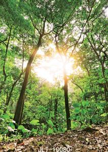 사진 스튜디오 사진 촬영을위한 햇빛 정글 사진 배경막 숲 사진 배경 비닐 천으로 숲 파티 배경