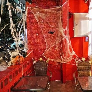 2018 Spider Web Decorazioni di Halloween Evento Party Favori Forniture Haunted House Prop Decorazione A Large With 2 Spider Prom Decorations 5