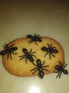 Новинка моделирование Муравей игрушки животных насекомых ложные Pismire ПВХ игрушки для Хэллоуина пугающий шалость поставки горячие Продажа 2 28yy bb
