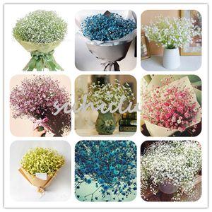 100 Pcs Bonsai Gypsophila Graines Starry Sky Très odorant Babysbreath pepin intérieur Floral Bouquet, Jardin Rare serre romantique fleur