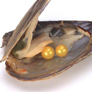 Venta al por mayor2018 Natural Akoya 6-7mm colores de la mezcla de agua dulce ronda gemelos Pearl Oyster para hacer bricolaje collar bracele pendientes anillo joyería regalo