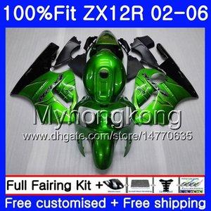 Inyección para Kawasaki ZX 12R ZX1200 2002 2003 2004 2005 2006 224HM.29 ZX12R 12 R 1200cc ZX12R 02 03 04 05 06 carenado verde brillante