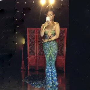Sexy Peacock Print Long Tail Dj Ds Nightclub Dress Gogo Femenina Cantante Stage Wear Prom Celebrar Vestidos Party Outfits DNV10008