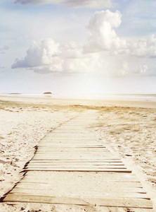 5x7ft Vinilo Digital Seaside Wood Road Sunset Beach Fondo Fotografía Estudio Fondo
