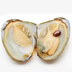 Venta al por mayor Triángulo natural de agua dulce Pearl Oyster, abierto con sorpresa (One # 5 Color Pearl in Oyster)