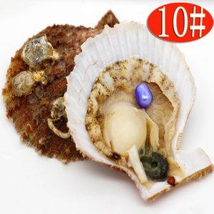 Venta al por mayor fiesta sorpresa regalo mar agua ostras de concha roja con 6-8 mm Oval # 10 azul claro perla 1 unids