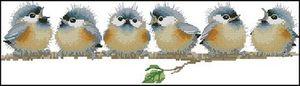 """""""Chorus Line"""" 14ct contados cross stitch bordado DIY artesanal needlework artesanato home decor 6 pássaros cantando animais"""