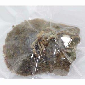 acqua di mare perla naturale 6-7MM perla rotonda in ostriche Akoya coperture di ostrica con Colouful perle gioielli sottovuoto