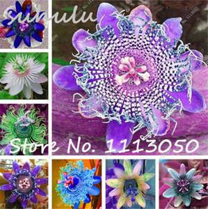 50 Pcs Passiflora Seeds Fruits Tree Seeds Bonsai Passion Tropical Flower Seeds For Home Garden Plant Sementes De Frutas Raras