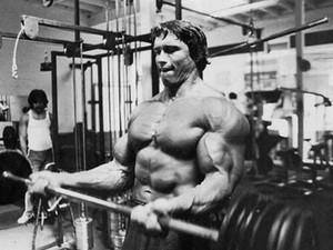 oda ev duvar dekorasyonu tuval posteri Arnold Schwarzenegger Vücut kas halter Yaşayan boyama tuval atletik spor salonları Dumbbells
