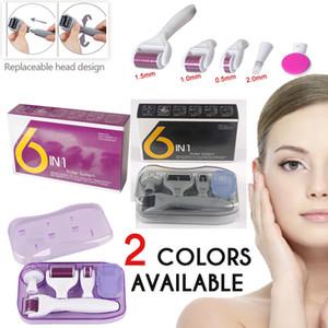 DRS Dermaroller System 6 in 1 Titanium Derma Roller Scar Gesichtsbürste Micro-Nadel-Therapie Skin Care Kit