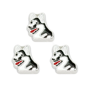 Wholesale floating locket charms Husky different types of dog charms With Good Quality for Living Memory Locket As gift for friends Family
