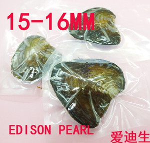 Vendita all'ingrosso 3PCS / lot Mostro ostrica 15-16MM Confezione sottovuoto Edison Pearl Oyster, HAVE One Edison Pearl in Every Oyster,