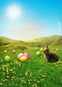 Fotografía feliz Pascua telones de fondo Sunny Blue Sky Impreso Conejo de colores de fondo Huevos verdes del prado amarillo de las flores bebé recién nacido Photo
