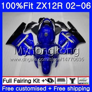 Injeção Para KAWASAKI ZX1200 1200cc ZX12R 02 03 04 05 06 224HM.0 ZX 12R 12 R ZX12R 2002 2003 2004 2005 2006 Fairing Fábrica azul Hot