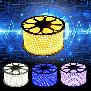 100MLED Neon Lights Aquarium SMD5050 IP65 Impermeabile 220V AC LED Strip flessibile neonlight tubi Luces Home Natale Party Tape