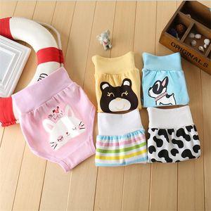 الكرتون babyTraining السراويل لطيف طفل القطن الملابس الداخلية الأزياء طفل سراويل عالية الخصر عالية الجودة الملابس الداخلية الوليد